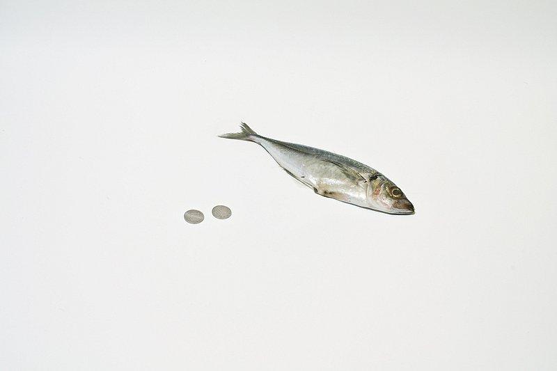 yen-1.jpg